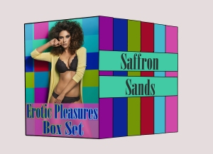 Erotic Pleasures Box Set